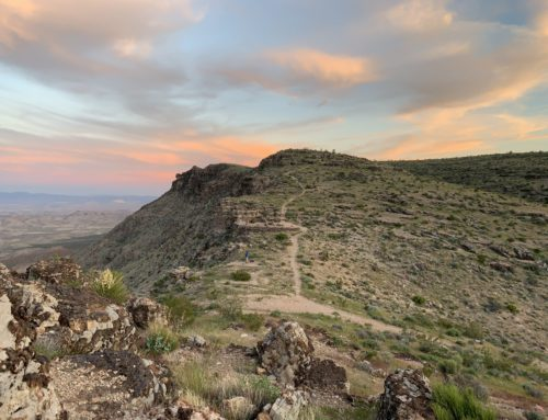 Natural Areas Worth Visiting on Your Next Vegas Trip