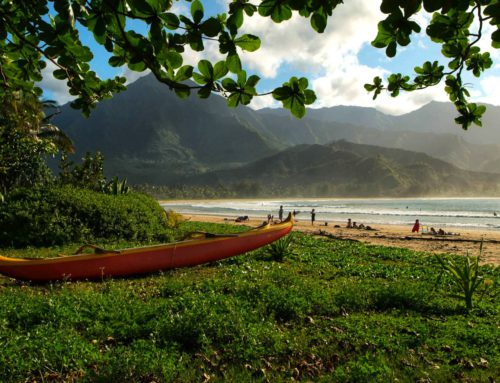 THE NORTH SHORE OF KAUA'I